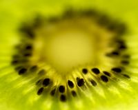 Kiwi Fruit Slice. Backlit slice of Kiwi Fruit, isolated against white stock photos