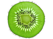 Kiwi fruit slice backlit Stock Images