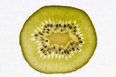 Kiwi fruit sliced, backlit and white background royalty free stock image