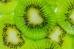 Kiwi fruit slices. Stock Photography