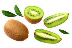 Kiwi fruit with slices and green leaves isolated on a white background royalty free stock photos