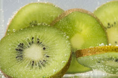 Kiwi. Fruit with soda water stock photo