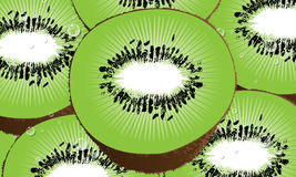 Kiwi Fruit Vector Royalty Free Stock Photos