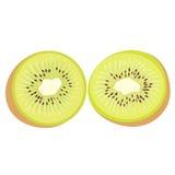 Kiwi fruit vector Stock Photos