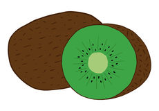 Kiwi fruit. Whole and cut in half kiwi fruit vector illustration doodle cartoon drawing. Cute green kiwi fruit with skin and seeds inside Royalty Free Stock Image