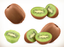Kiwi fruit. Whole and pieces. Sweet fruit. Vector icons set. Realistic illustration Royalty Free Stock Images