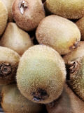 Kiwi. Fruits Stock Images