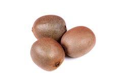 Kiwi Fruits Royalty-vrije Stock Afbeeldingen