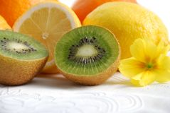Kiwi fruits and citrus Royalty Free Stock Photos