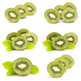 Kiwi fruits collection Royalty Free Stock Image