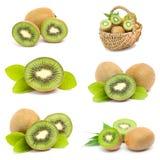 Kiwi fruits collection Royalty Free Stock Photos