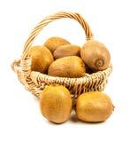 Kiwi fruits Royalty Free Stock Image