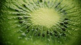 Kiwi Fruits banque de vidéos