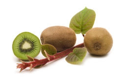 Kiwi fruits and plants Stock Photos
