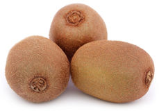 Kiwi fruits Royalty Free Stock Image
