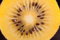 Kiwi gold Royalty Free Stock Photo