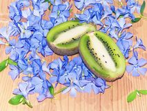 Kiwi green and a lot of blue flower Stock Image