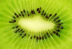 Kiwi, high resolution Stock Image
