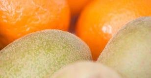 Kiwi i mandarines Obraz Stock