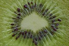 Kiwi i sammanhanget Royaltyfri Fotografi