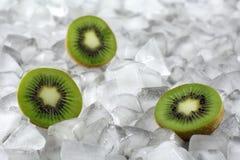 Kiwi on ice royalty free stock photos