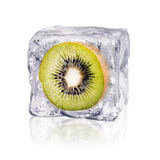 Kiwi in an ice cube. A kiwi enclosed in an ice cube before white background royalty free stock photography