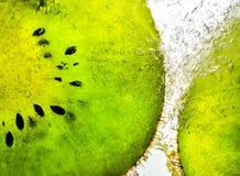Kiwi in ijs Royalty-vrije Stock Afbeelding