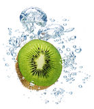 Kiwi im Wasser stockbilder