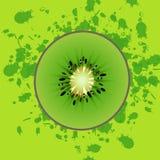 Kiwi. Image of kiwi on a green background with splashes Stock Images