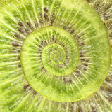 Kiwi infinity spiral abstract background. Stock Images
