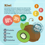 Kiwi  infographics and vitamins in a flat style. Vector illustration EPS 10 Stock Images