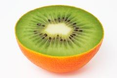 Kiwi inside orange peel. Photo manipulation:  kiwi surrounded by an orange peel Stock Photography