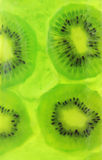 Kiwi Jelly Royalty Free Stock Photos
