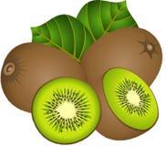 Kiwi jugoso stock de ilustración