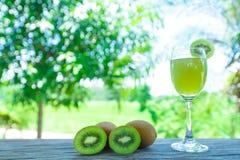 Kiwi Juice Fotos de archivo libres de regalías
