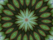 Kiwi kaleidoscope royalty free stock image