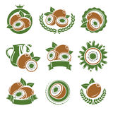 Kiwi labels and elements set. Vector Royalty Free Stock Images