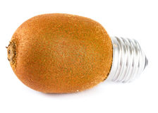 Kiwi lightbulb Royalty Free Stock Image