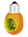 Kiwi lightbulb Stock Photography