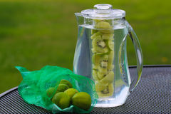 Kiwi Lime Infused Water Royalty-vrije Stock Fotografie