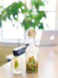 Kiwi and Lime Infused Water in Art Carafe Royalty Free Stock Photos