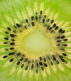 Kiwi (macro). Close up of ripe kiwi Royalty Free Stock Photo