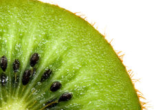Kiwi Macro stock photography