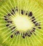 Kiwi a macroistruzione estremo Immagini Stock
