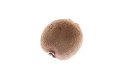 Kiwi marrone peloso della frutta tropicale su fondo bianco fotografia stock libera da diritti