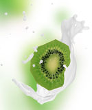 Kiwi with milk splash Royalty Free Stock Images