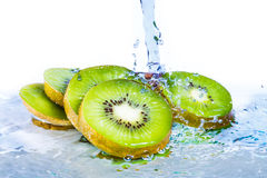Kiwi mit Wasserspritzen stockbilder