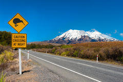 Kiwi and mount Ruapehu. Kiwi sign near the road leading to the volcano Mt. Ruapehu, national park Tongariro. New Zealand royalty free stock images