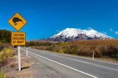 Kiwi och montering Ruapehu Royaltyfria Bilder