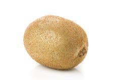 Kiwi owoc odizolowywająca obrazy stock